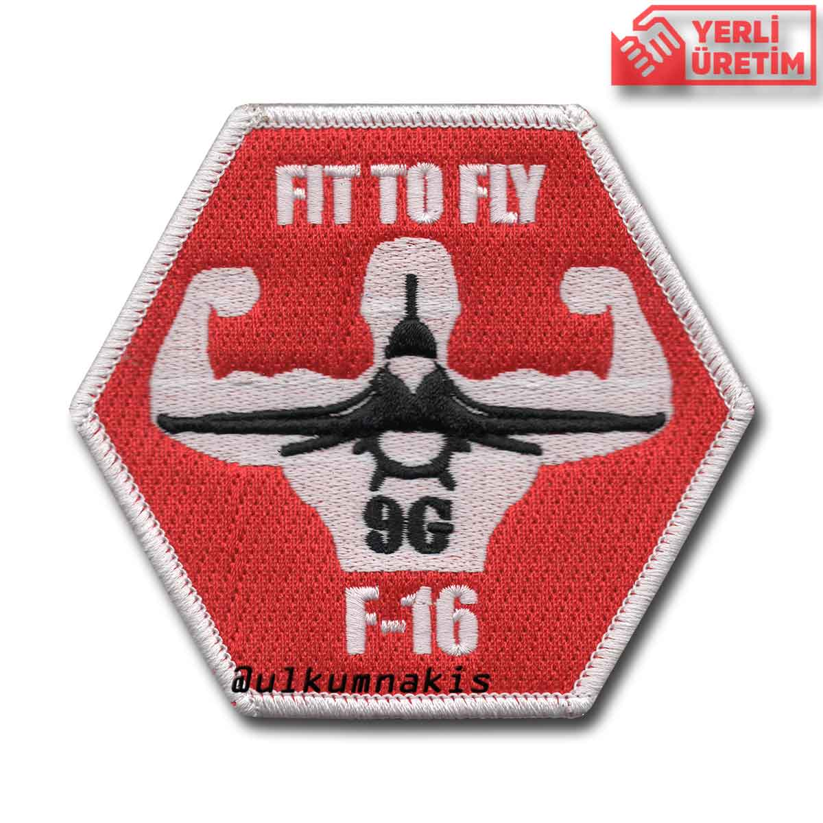F-16 FIT TO FLY